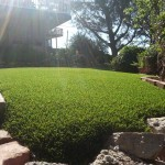 Synthetic Lawn San Diego, Chula Vista Artificial Lawns