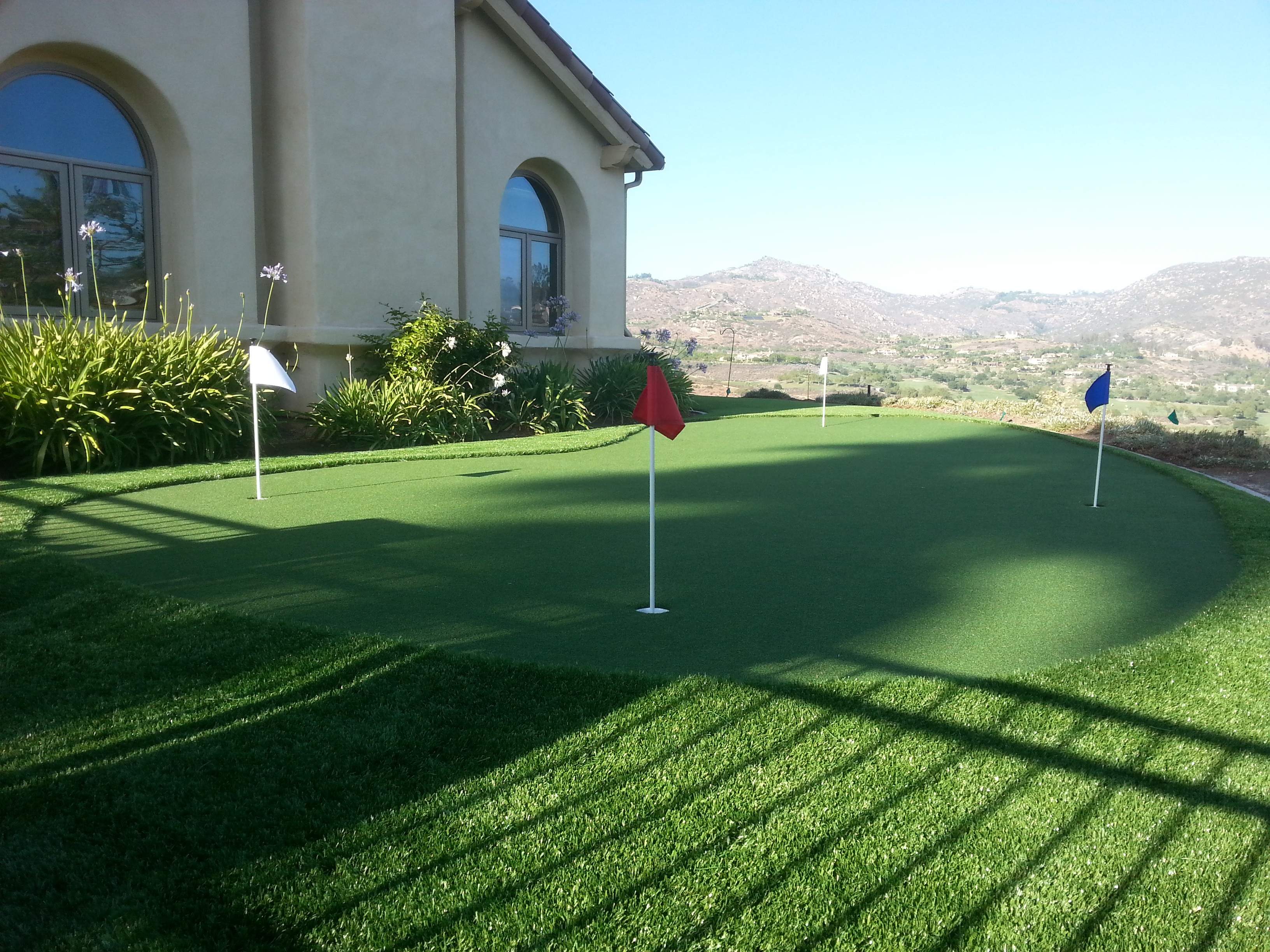 Artificial Grass Landscape Artificial grass chula vista artificial turf chula vista ca workwithnaturefo