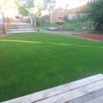 Artificial Grass For Home Chula Vista, Fake Grass For Dogs San Diego