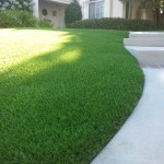 Putting Greens For Home San Diego, Best Artificial Grass Chula Vista