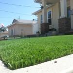 Artificial Turf Chula Vista, Fake Grass San Diego