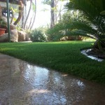 Best Artificial Turf In Chula Vista, Best Artificial Grass San Diego,