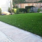 Synthetic Turf In San Diego, Best Artificial Turf In Chula Vista