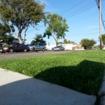 Chula Vista Artificial Turf Installation, Synthetic Grass San Diego Ca