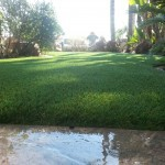 Artificial Grass Installation Chula Vista, Synthetic Turf San Diego Ca