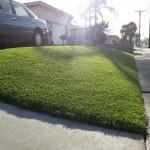 Artificial Grass Chula Vista Reviews, Artificial Grass For Backyard San Diego,